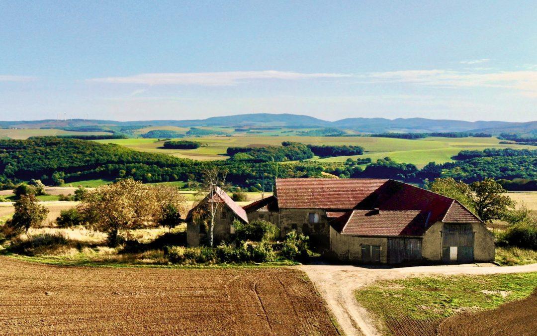 Wendepunkte in der Landwirtschaft: Ein Interview mit Michael König