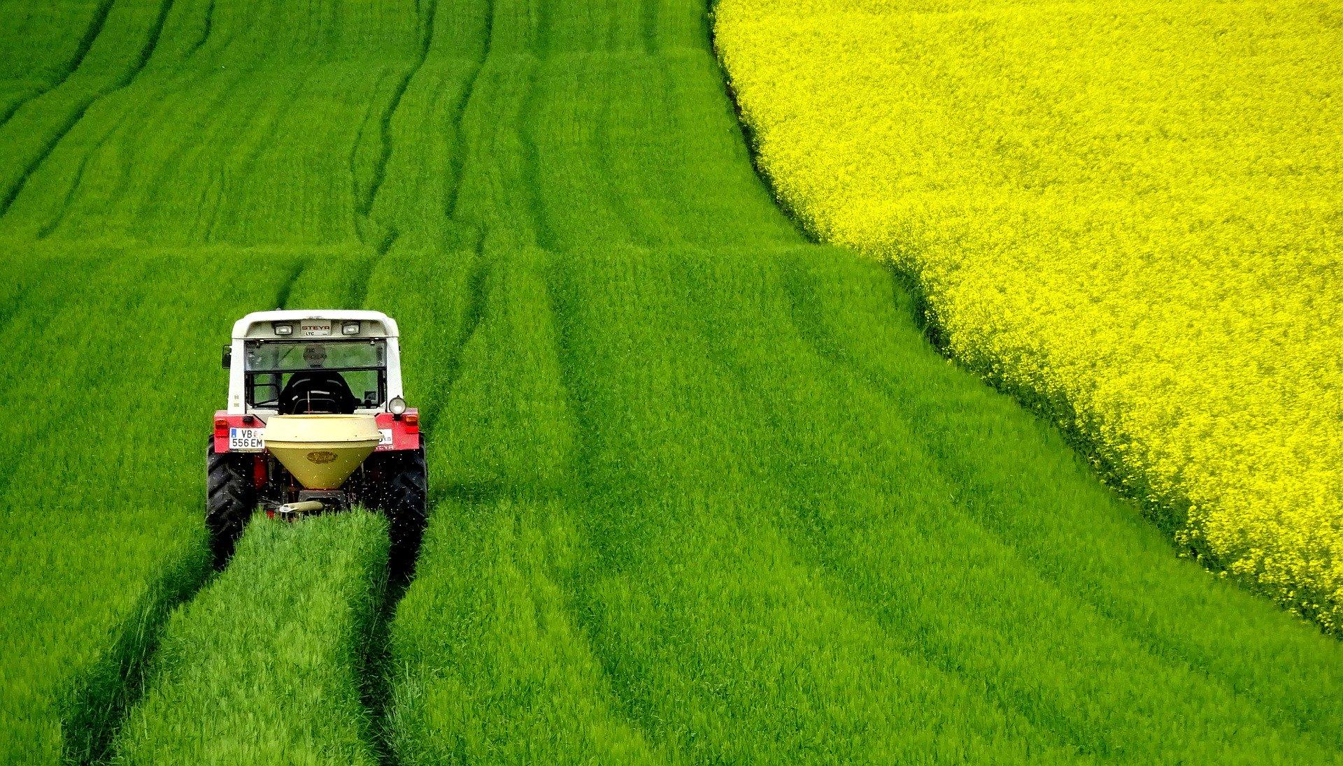 Trecker auf grünem Feld